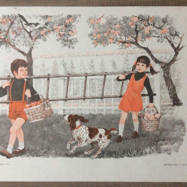 affiche scolaire école la cueillette des pommes