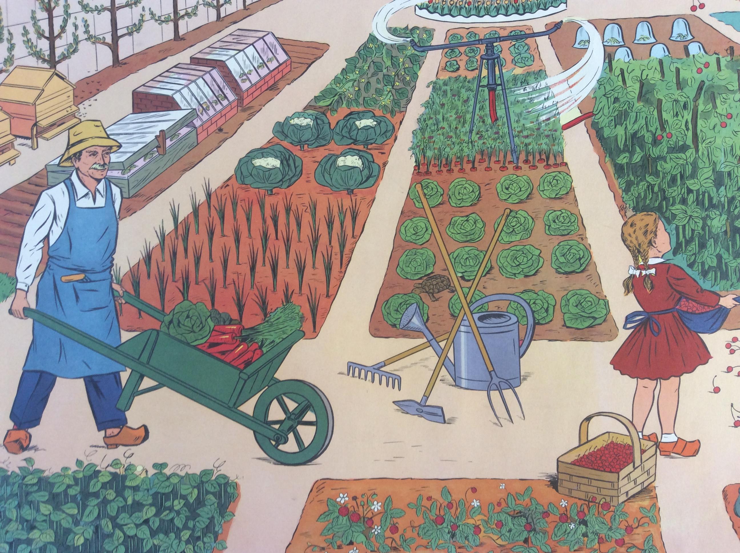 Tableau pédagogique scolaire ancien le Jardin au Printemps