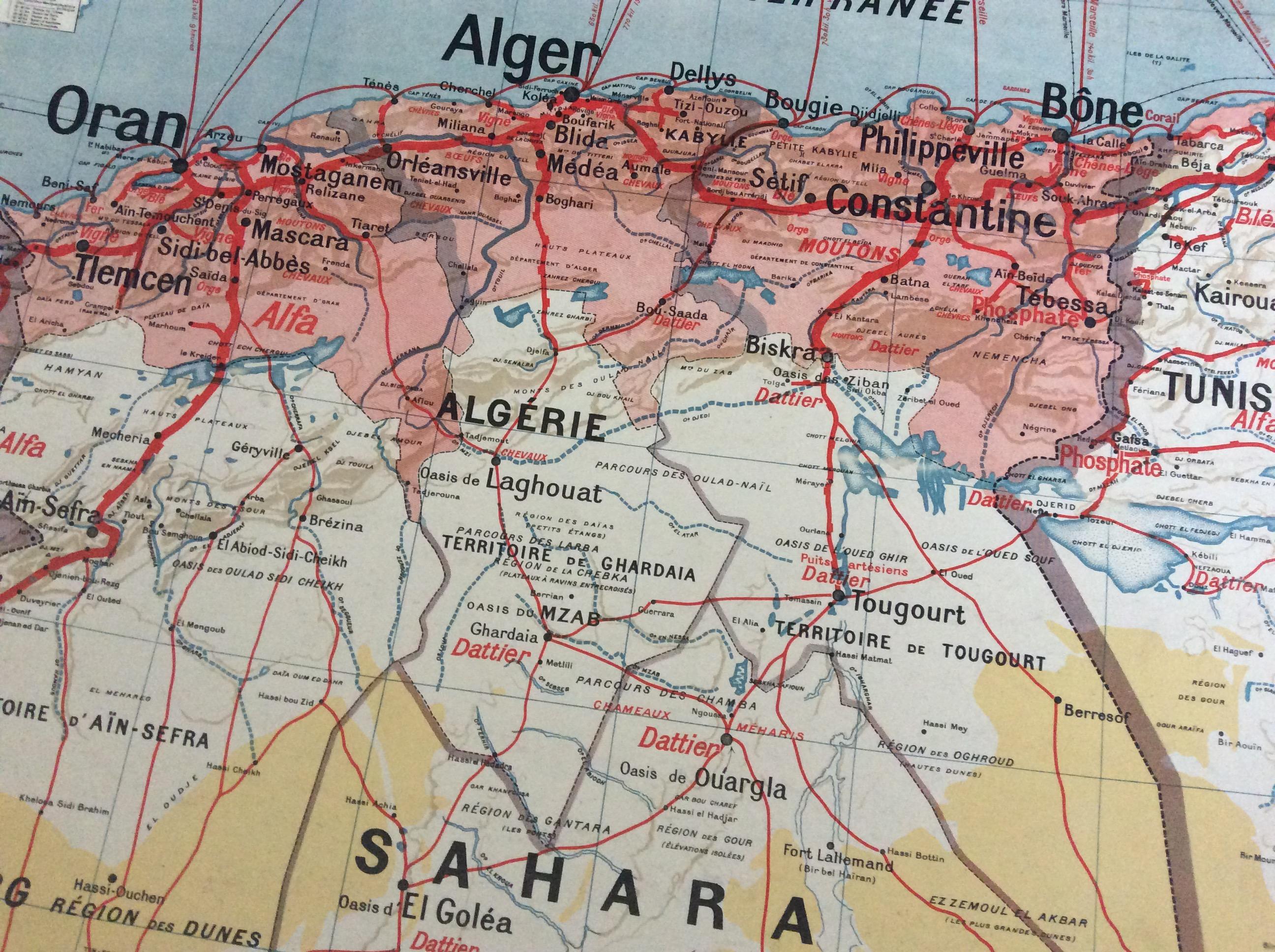 AFFICHE CARTE SCOLAIRE MURALE VIDAL LABLACHE ALGÉRIE TUNISIE DÉCO VINTAGE